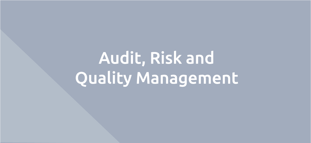 Audit, Risk and Quality Management: Meet your Quality Requirements without Sacrificing Productivity